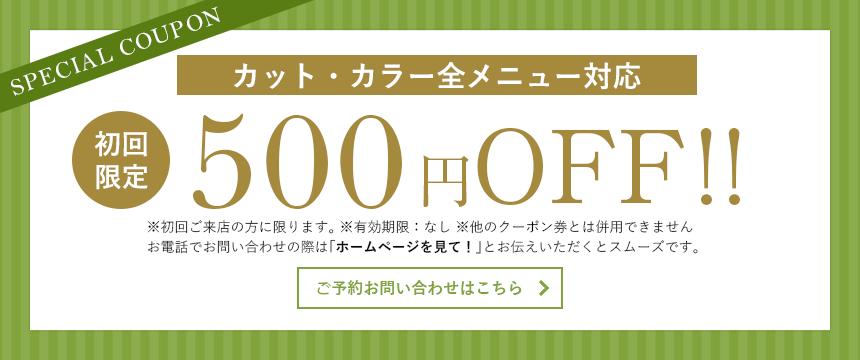 カット(シャンプー・ブロー込み)初回限定550円OFF!!